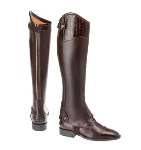 Chaps DALLAS Deluxe/CROCO - brown