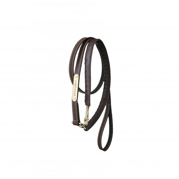 Führleine Leather Covered Chain