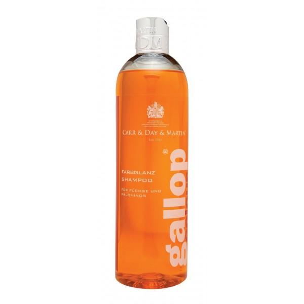 Farbglanz Shampoo - Füchse und Palominos